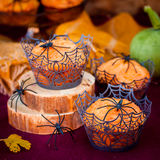 Halloween Pumpkin Muffins Decorated with Spiders and Spider Web Stock Image