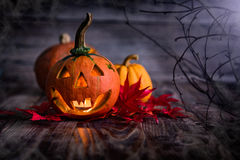 Halloween Pumpkin. In A Mystic Forest At Night Stock Photography