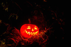 Halloween Pumpkin In A Mystic Forest At Night. Halloween scary face pumpkin in mystery forest Royalty Free Stock Photo