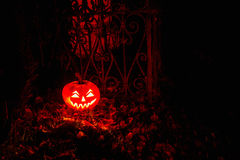 Halloween Pumpkin In A Mystic Forest At Night. Halloween scary face pumpkin in mystery forest Stock Photos