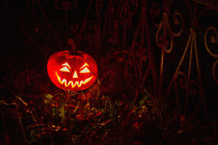 Halloween Pumpkin In A Mystic Forest At Night. Halloween scary face pumpkin in mystery forest Stock Images