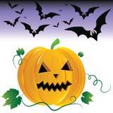 Halloween pumpkin and night bats. Royalty Free Stock Image