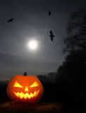 Halloween pumpkin at night Stock Image