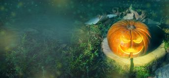 Free Halloween Pumpkin On The Ground At Night In A Mystical Forest. Halloween Background. Sinister Eyes Of Pumpkins. Halloween Party. Royalty Free Stock Image - 157619286