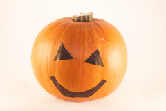 Halloween pumpkin. Orange halloween pumpkin, ioslated on white background Stock Images