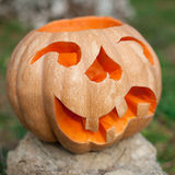 Halloween pumpkin outdoor Stock Images