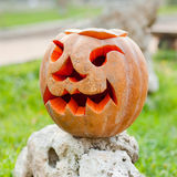 Halloween pumpkin outdoor Royalty Free Stock Image