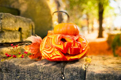 Halloween pumpkin outdoors Stock Image