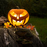 Halloween pumpkin outdoors Stock Photos