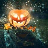 Halloween pumpkin outdoors Royalty Free Stock Images