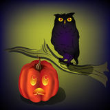 Halloween pumpkin and owl Stock Image