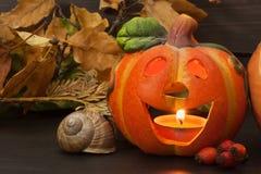 Halloween pumpkin party, Big terrible Pumpkin lighten and reflection on wooden table background. Stock Photos