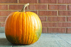 Halloween Pumpkin. Pumpkin placed next to brick walls background, waiting for Halloween to be carved Stock Photo