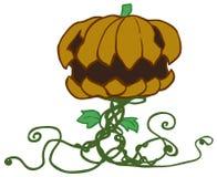 Halloween Pumpkin Plant Cartoon. Halloween pumpkin plant character cartoon color design element, vector illustration, horizontal, isolated, over white Royalty Free Stock Photo