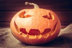 Halloween pumpkin portrait on dark background Stock Image