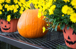 Halloween pumpkin and pots Stock Photography