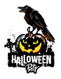 Halloween pumpkin with raven. Halloween pumpkin with black raven. Vector illustration Stock Photo