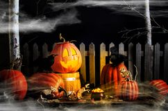 Halloween Pumpkin Ravens and Mice Royalty Free Stock Photo