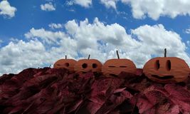 Halloween pumpkin on red leafs , 3d rendering Stock Photography