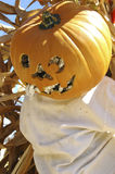 Halloween pumpkin scarecrow Stock Photography