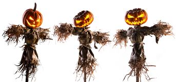Free Halloween Pumpkin Scarecrow Isolated On White Background Royalty Free Stock Photo - 157969215