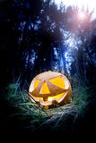 Halloween pumpkin. Scary halloween pumpkin in the dark forest at night Royalty Free Stock Image