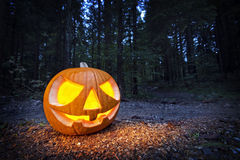 Halloween pumpkin. Scary halloween pumpkin in the dark forest at night Royalty Free Stock Photography