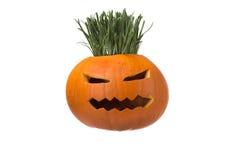 Halloween pumpkin with scary face. Jack O' Lantern isolated on w Stock Photos