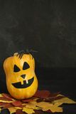 Halloween pumpkin with scary face, ruber spider and autumn leave Stock Image