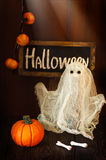 Halloween. Halloween pumpkin and scary ghost at night. Decoration for children Stock Photo