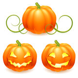 Halloween pumpkin. Stock Images