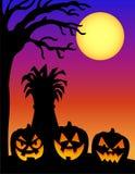 Halloween Pumpkin Silhouette/e Stock Photos