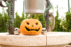 Halloween pumpkin and skull Stock Photography