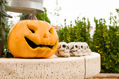 Halloween pumpkin and skull Stock Images