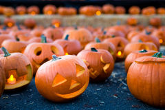 Halloween pumpkin with smiling face carved into it. Stock Images