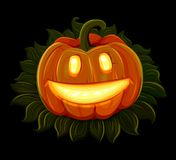 Halloween pumpkin is smiling. Isolated on black background Royalty Free Stock Photos