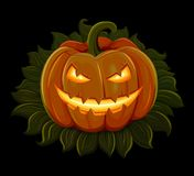 Halloween pumpkin is smiling. Isolated on black background Royalty Free Stock Photo