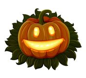 Halloween pumpkin is smiling. Isolated on white background Stock Image