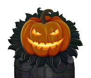 Halloween pumpkin is smiling. Isolated on white background Royalty Free Stock Photo
