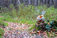 Halloween pumpkin with smoke in the forest. Lays on the stump Royalty Free Stock Photography