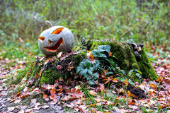 Halloween pumpkin with smoke in the forest. Lays on the stump Royalty Free Stock Image