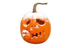 Halloween pumpkin with snow. On top Stock Photography