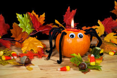Halloween pumpkin spider in leaves Royalty Free Stock Image
