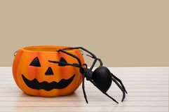 Halloween pumpkin and a spider on orange background. Halloween i royalty free stock images