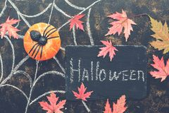 Halloween, pumpkin, spider, red maple leaves, spider web drawn in chalk on a dark rustic background. Signboard with with text-Hall. Oween. Top view,flat lay royalty free stock images
