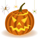 Halloween pumpkin and spiders on the web Stock Images