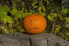 Halloween pumpkin on stone outside Royalty Free Stock Photos
