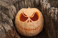 Halloween pumpkin in a stump. Halloween pumpkin in a wooden stump close up Stock Image