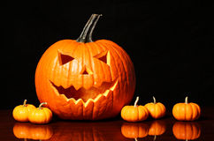 Halloween pumpkin and tiny pumpkins on black Royalty Free Stock Images
