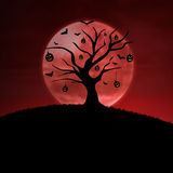 Halloween pumpkin tree on red background Royalty Free Stock Images